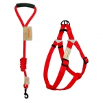 Leash and Harness Set