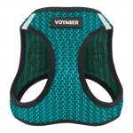 Wearable Harness - Turquoise
