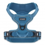 Dual-Attachment Adjustable Harness - 3M Reflective Band - Turquoise