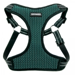 Adjustable Step-In Harness - 3M Technology - Turquoise Base
