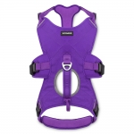 Control Harness - Purple