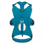 Control Harness - Turquoise