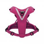 Dual-Attachment Outdoor Harness-Fuchsia