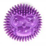 Monkey - Purple